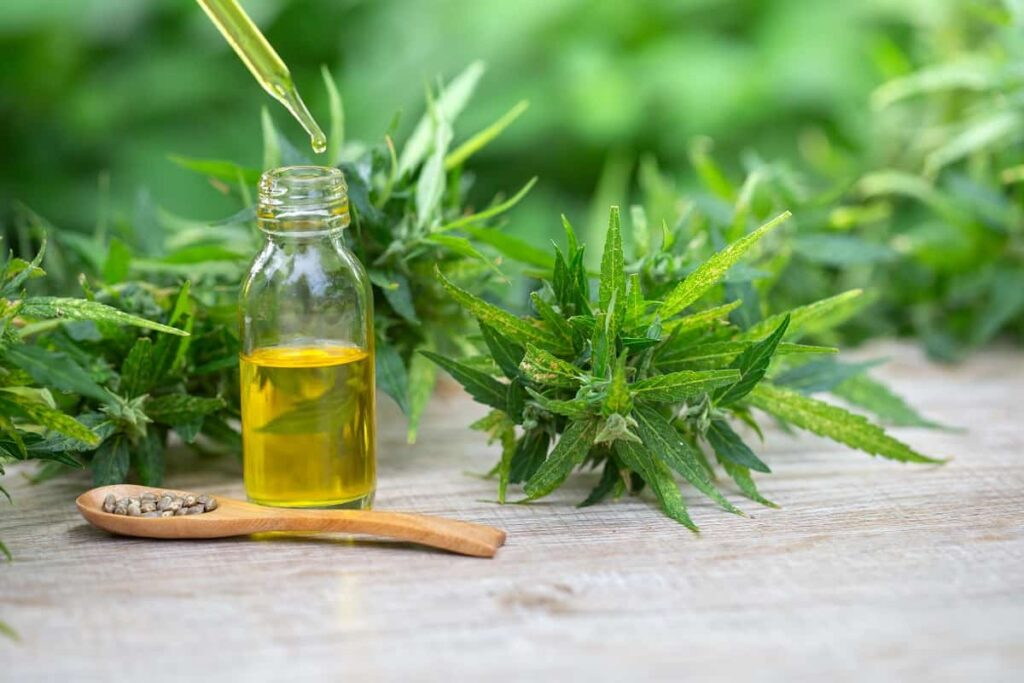 What is the Difference Between CBD and Hemp Oil - naturallypressed.com